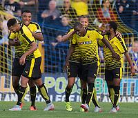 St Albans City v Watford - 08/07/2015