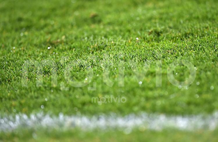 Fussball  2. Bundesliga  Saison 2015/2016  27. Spieltag SC Freiburg - Karslruher SC        13.12.2015 Rasen im Freiburger Schwarzwaldstadion