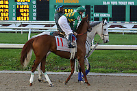 January 17, 2015: Eagle (KY) with Brian J Hernandez Jr. in the Lecomte Stakes at the New Orleans Fairgrounds course. Steve Dalmado/ESW/CSM