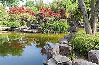 Yangzhou, Jiangsu, China.  Ge Garden Pond and Reflection.