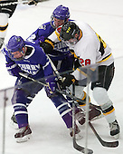 James Murphy (Curry - 17), Shane Harrington (Curry - 2), Mike Domsodi (WIT - 28) - The Wentworth Institute of Technology Leopards defeated the visiting Curry College Colonels 1-0 on Saturday, November 23, 2013, at Walter Brown Arena in Boston, Massachusetts.