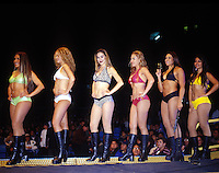 The women of the ring escort the luchadores to the ring and then line-up for the crowd to chear and the photographers to take pictures of. Arena Mexico, June 2004
