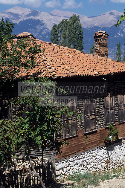 Europe/Turquie/Env d'Altinyata : Habitat traditionnel