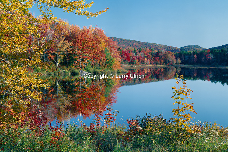 Mill Pond and Goves Mountain<br />