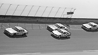 Terry Labonte (44) Kyle Petty(7) Cale Yarborough(28) and Bobby Allison (22)Firecracker 400 at Daytona International Speedway in Daytona beach, FL on July 4m 1984.  (Photo by Brian Cleary/www.bcpix.com)