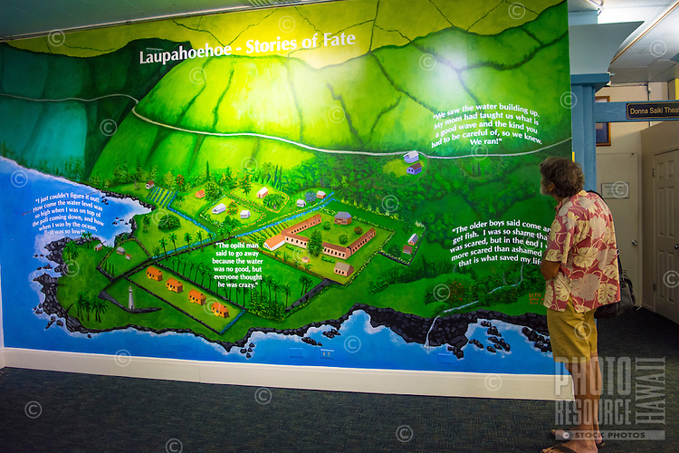 An older visitor examines an artist's rendering of Laupahoehoe Point, which was wiped out by a tsunami in 1946, at the Pacific Tsunami Museum, downtown Hilo, Big Island of Hawai'i.
