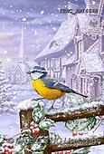 Marcello, CHRISTMAS LANDSCAPES, WEIHNACHTEN WINTERLANDSCHAFTEN, NAVIDAD PAISAJES DE INVIERNO, paintings+++++,ITMCXM1664B,#XL#