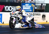 Jul. 26, 2013; Sonoma, CA, USA: NHRA pro stock rider Adam Arana during qualifying for the Sonoma Nationals at Sonoma Raceway. Mandatory Credit: Mark J. Rebilas-