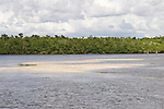 The Chokoloskee Bay, Everglades City