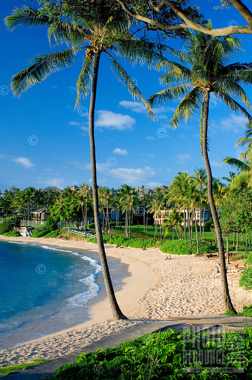 "Some regard Maui's Kapalua Bay as the ""world's best"" or ""America's best"" beach."