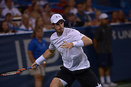 Washington, DC - August 5, 2015: Number 1 seed Andy Murray prepares to take a forehand shot in a match against Teymuraz Gabashvii of Russia during the Citi Open tennis tournament at the FitzGerald Tennis Center in the District of Columbia August 5, 2015.  (Photo by Don Baxter/Media Images International)