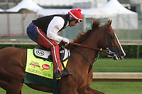 May 1, 2014: California Chrome gallops in preparation for the Kentucky Derby at Churchill Downs in Louisville, KY. Zoe Metz/ESW/CSM
