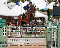 Blue Angel ridden by Lauren Hough,  USEF trials#2 Wellington Florida. 3-22-2012