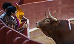Feria de Julio de Valencia 2013.<br /> Mano a mano entre Morante de la Puebla y Talavante con toros de Juan Pedro Domecq y Victoriano del Rio.<br /> 27 de julio de 2013 - Valencia (España).