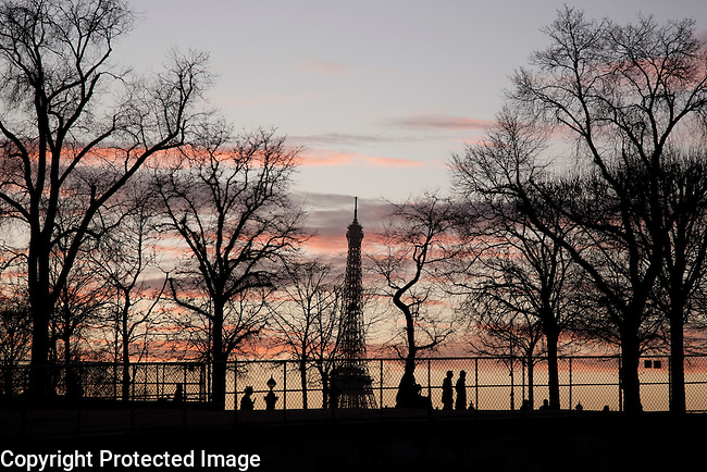 Eiffel Tower and Winter Trees, Paris in France