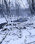 A Little Creek Covered In Winter Snow On A Cold And Overcast Ohio Day, Keehner Park, Southwestern Ohio, USA