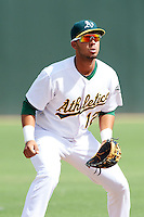Oakland Athletics minor league infielder Wilfredo Solano #12 during an instructional league game against the Arizona Diamondbacks at the Papago Park Baseball Complex on October 11, 2012 in Phoenix, Arizona. (Mike Janes/Four Seam Images)