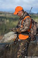 White tailed deer hunting