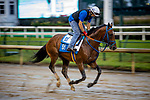September 2, 2020:  Mr Big News exercises as horses prepare for the 2020 Kentucky Derby and Kentucky Oaks at Churchill Downs in Louisville, Kentucky. The race is being run without fans due to the coronavirus pandemic that has gripped the world and nation for much of the year. Evers/Eclipse Sportswire/CSM