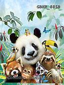 Howard, SELFIES, paintings+++++,GBHR885B,#Selfies#, EVERYDAY ,panda,pandas