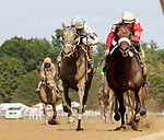 Weather Wiz (no. 5) wins Race 5, Sep. 1, 2018 at the Saratoga Race Course, Saratoga Springs, NY.  Ridden by Javier Castellano and trained by James Jerkens, Weather Wiz  finished 1/2 length in front of Wooderson  (no. 4).  (Bruce Dudek/Eclipse Sportswire)
