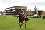 LONGCHAMP, FRANCE - October 06, 2018: View at the renovated Grandstand of the Longchamp race track, now officially called ParisLongchamp.
