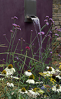 A water feature with Verbena bonariensis, Echinacea and the yellow flowering heads of Bronze Fennel