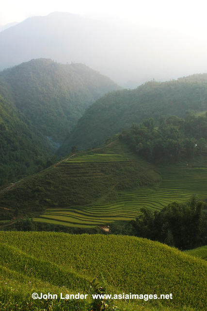 Some of the rice terraces in the Sapa area are 2000 years old.  They were carved into the mountains by local inhabitants, as they are lacking in flat plains to plant their crops. It is believed that the terraces were built by hand and are fed by an ancient irrigation system from rainforests above the terraces.