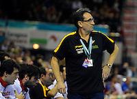 21.01.2013 World Championshio Handball. Match between Spain vs Serbia (31-20) at the stadium Principe Felipe. The picture show Valero Rivera (Coach of Spanish team).