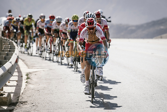 The peloton with Darwin Atapuma (COL) Cofidis on the front during Stage 5 of the 10th Tour of Oman 2019, running 152km from Samayil to Jabal Al Akhdhar (Green Mountain), Oman. 20th February 2019.<br /> Picture: ASO/P. Ballet | Cyclefile<br /> All photos usage must carry mandatory copyright credit (© Cyclefile | ASO/P. Ballet)
