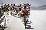 The peloton with Darwin Atapuma (COL) Cofidis on the front during Stage 5 of the 10th Tour of Oman 2019, running 152km from Samayil to Jabal Al Akhdhar (Green Mountain), Oman. 20th February 2019.<br /> Picture: ASO/P. Ballet | Cyclefile<br /> All photos usage must carry mandatory copyright credit (&copy; Cyclefile | ASO/P. Ballet)