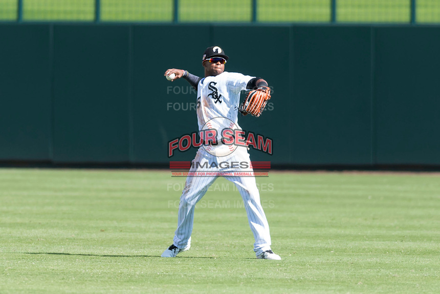 Glendale Desert Dogs center fielder Luis Alexander Basabe (15), of the Chicago White Sox organization, warms up between innings of an Arizona Fall League game against the Scottsdale Scorpions at Camelback Ranch on October 16, 2018 in Glendale, Arizona. Scottsdale defeated Glendale 6-1. (Zachary Lucy/Four Seam Images)