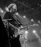 Stephen Stills with Crosby, Stills & Nash at the Tollwood Festival in Munich, Germany.