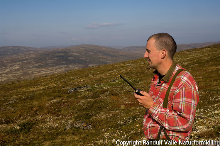 Jeger bruker jaktradio i fjellet ---- Hunter using radio