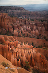 Morning Light at Bryce Canyon, Utah