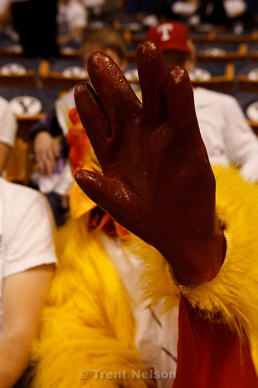 Trent Nelson     The Salt Lake Tribune.Shy chicken as BYU hosts Saint Mary's, college basketball Wednesday January 16, 2013 in Provo.