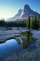 Liberty Bell Mountain and creek through meadow, Washington Pass Overlook, North Cascades, Washington
