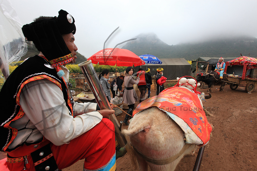 Luoping, Yunnan. During the season, a peasant in the traditional costume of the Buyi minority offers tourists a ride in a cart pulled by buffaloes under the gaze of a city-dweller.