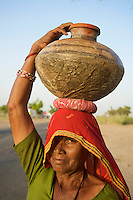 On the road from Bikaner to Mandava, Rajasthan India, a women carries water back to her village