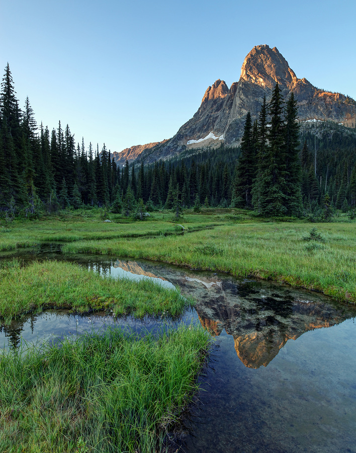 Liberty Bell Mountain reflected in pond in grassy meadow, Washington Pass, North Cascades, Chelan County, Washington State