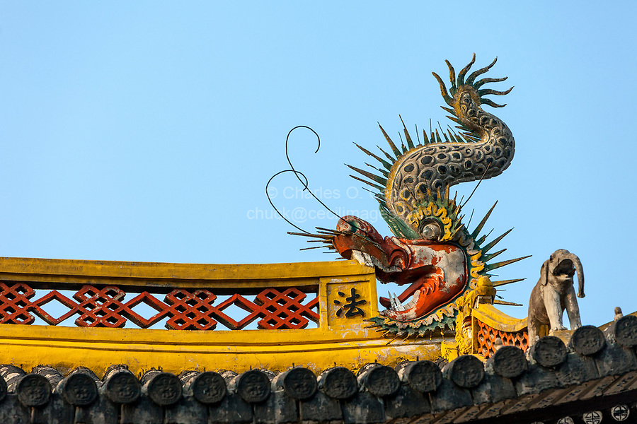 Wenzhou, China.  Dragon Detail on the Jiangxin Buddhist Temple.