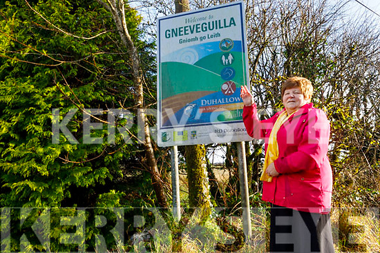 """Local historian Eileen Fleming standing in front of the road sign that says """"Gneeveguilla"""