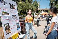 Allie Frank, Independent Shakespeare Company<br /> 2018 InternLA student participants share their poster presentations about their summer experiences working as interns in Los Angeles. Summer Experience Expo, Sept. 13, 2018 in the Academic Quad. Hosted by Career Services.<br /> (Photo by Marc Campos, Occidental College Photographer)