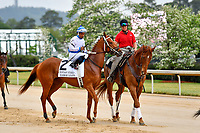 HOT SPRINGS, AR - APRIL 13:  Fantasy Stakes at Oaklawn Park on April 13, 2018 in Hot Springs, Arkansas.#2 Harbor Lights with jockey Ricardo Santana, Jr.  (Photo by Ted McClenning/Eclipse Sportswire/Getty Images)