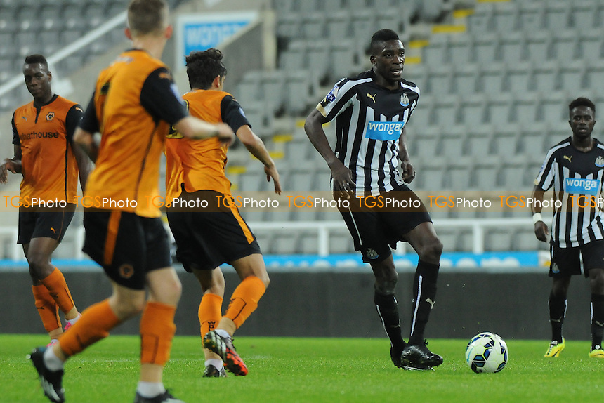 Sammy Ameobi of Newcastle United - Newcastle United Under-21 vs Wolverhampton Wanderers Under-21 - Barclays Under-21 Premier League Football at St James' Park, Newcastle upon Tyne - 15/09/14 - MANDATORY CREDIT: Steven White/TGSPHOTO - Self billing applies where appropriate - contact@tgsphoto.co.uk - NO UNPAID USE