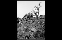 Gilbert Hill - Penistone, Barnsley, South Yorkshire, England