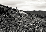 Photograph of a monastery on the hill leading to the town of Cortona, Italy. The hillside is covered with olive trees.