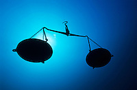 Silhouette of a pair of scales underwater.