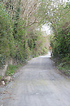 Laneway to Delvin Club..Photo NEWSFILE/Jenny Matthews.(Photo credit should read Jenny Matthews/NEWSFILE)....This Picture has been sent you under the condtions enclosed by:.Newsfile Ltd..The Studio,.Millmount Abbey,.Drogheda,.Co Meath..Ireland..Tel: +353(0)41-9871240.Fax: +353(0)41-9871260.GSM: +353(0)86-2500958.email: pictures@newsfile.ie.www.newsfile.ie.FTP: 193.120.102.198.