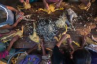 Women plucking chickens. La Mayordomia organizing the fiesta de la Virgen de Guadalupe, Hueyapan, Tetela del Volcan, Morelos, Mexico